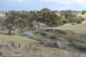 Kororoit Creek, Caroline Springs